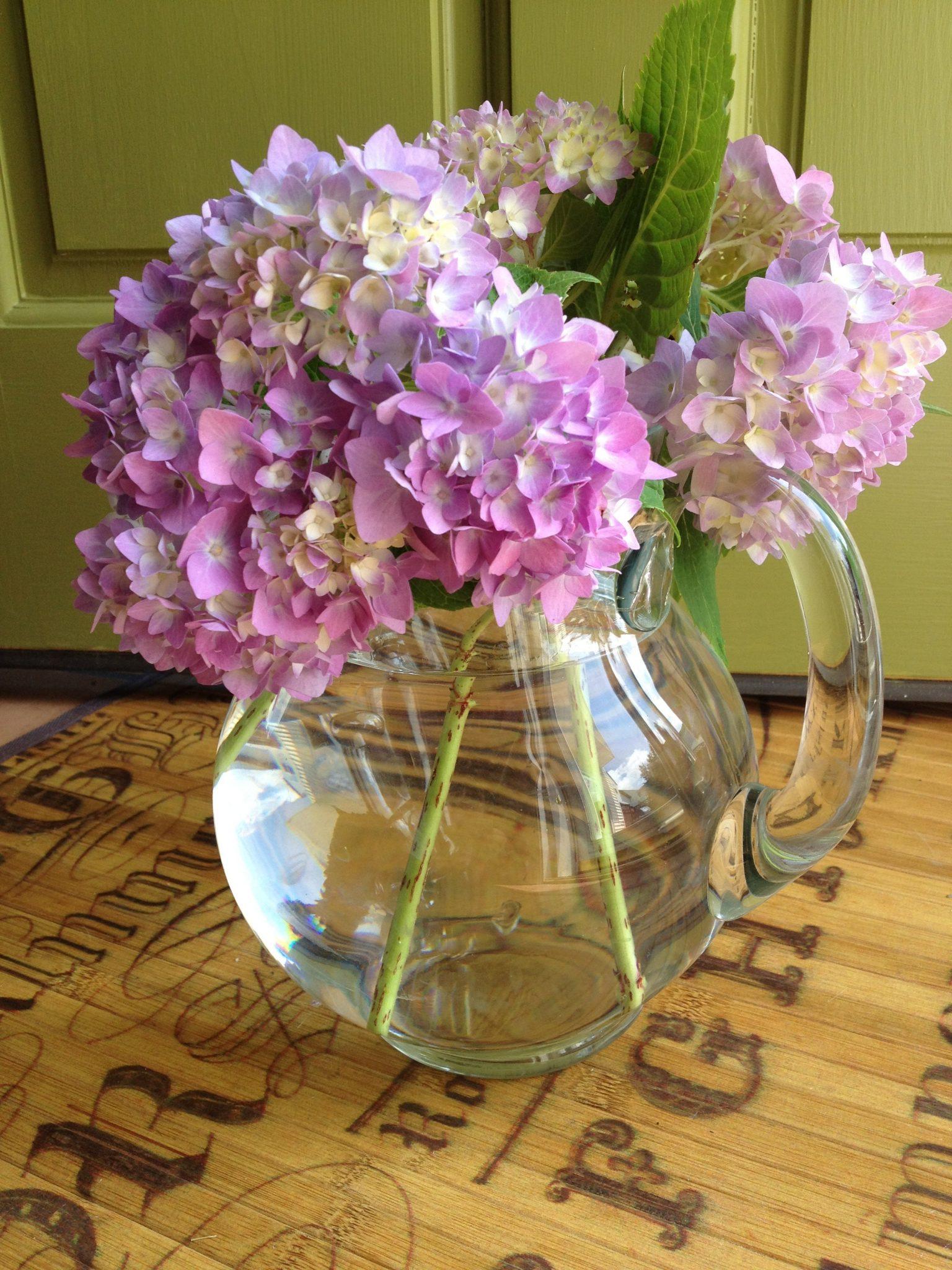 Hydrangea-glass-pitcher