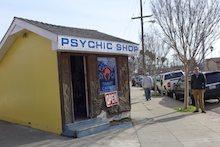 psychic fortune teller