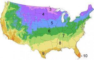 Burpee Garden Zone Map
