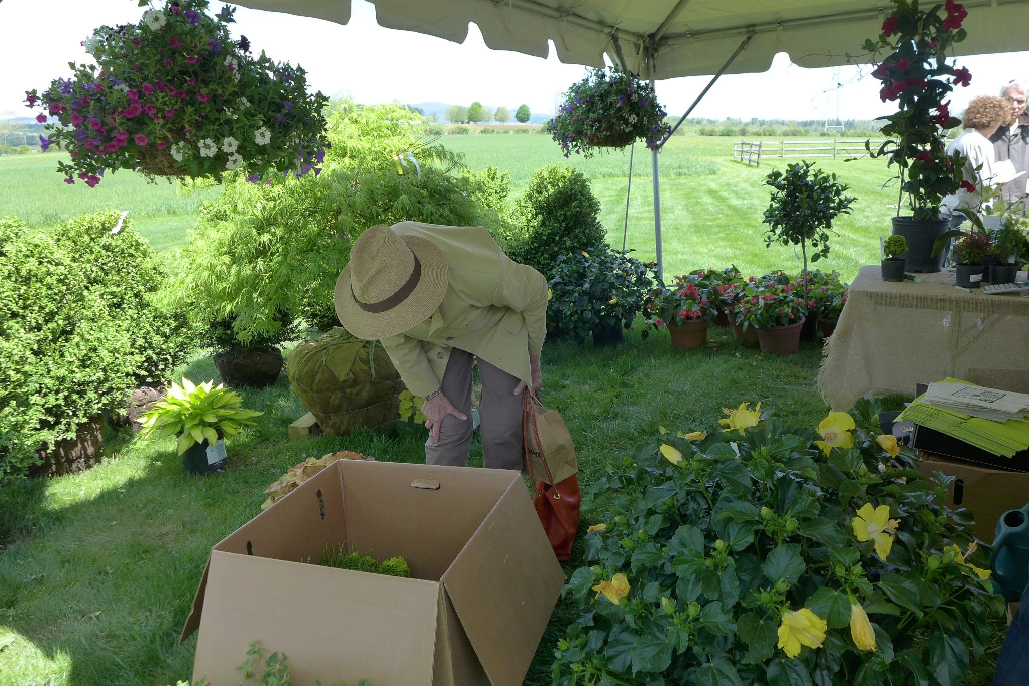 The event featured a well-organized system for processing your purchases. Orders were boxed or bagged and tagged with your individual buyer's number and moved to a marked location behind the barn. At the end of the day you just had to drive up and hard-working volunteers loaded your car.