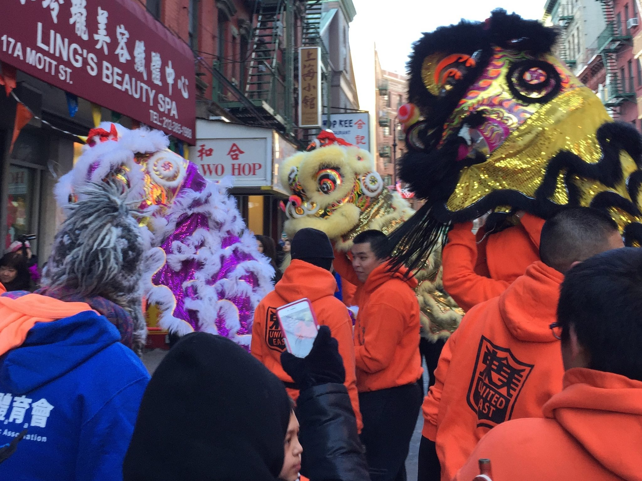 Chinatown dragons