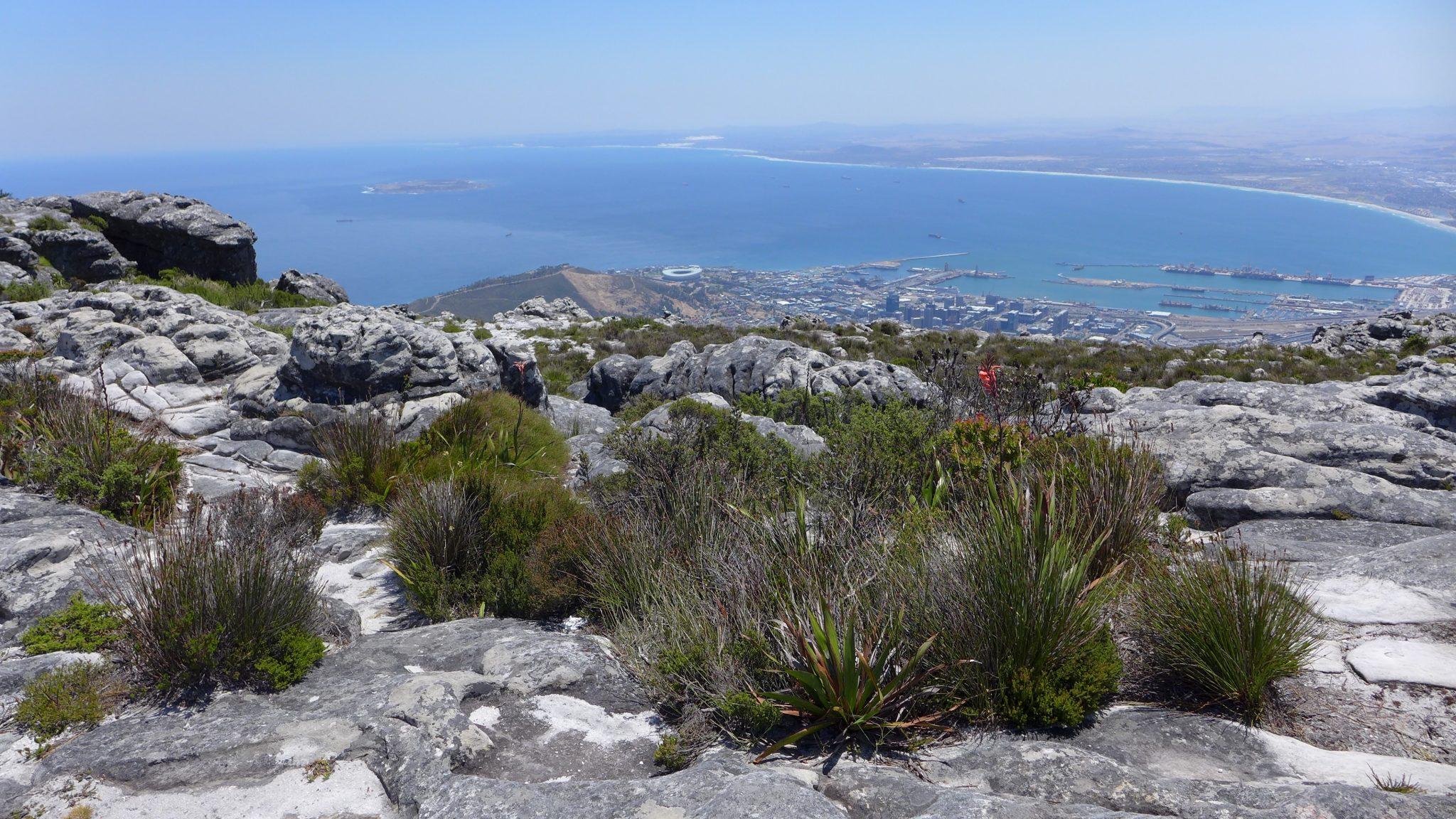 table-mountain-view