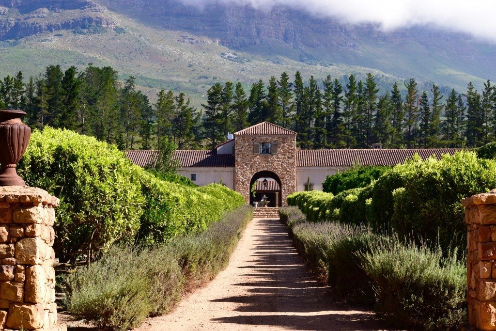 Tasting south african wine in stellenbosch the open suitcase for Jardin wine south africa