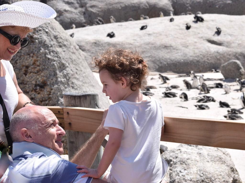 grandparents-child-penguins