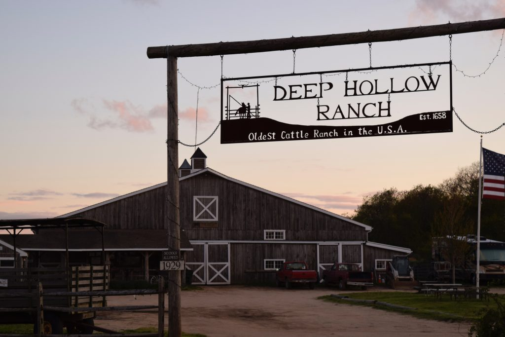 deep-hollow-ranch-montauk