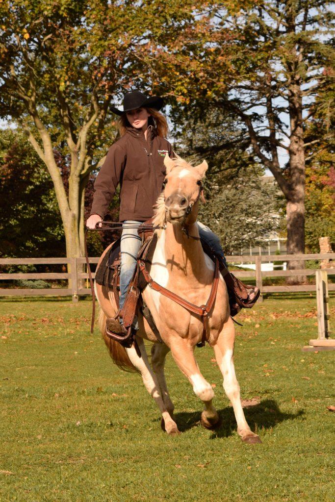 kieran-horse