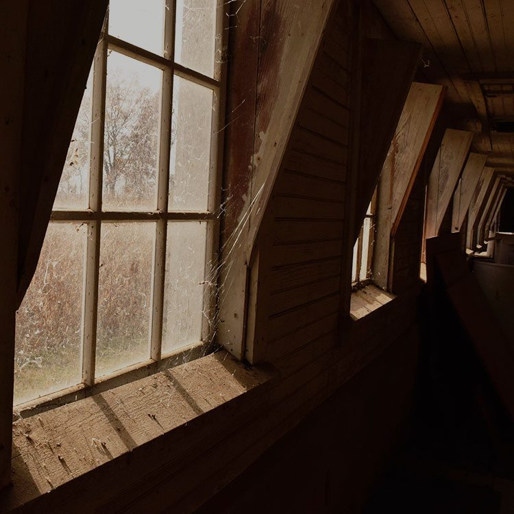Dusty windows with spiderwebs was a challenge to capture for a beginning photographer.