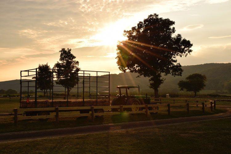 sunset-donaldson-farm