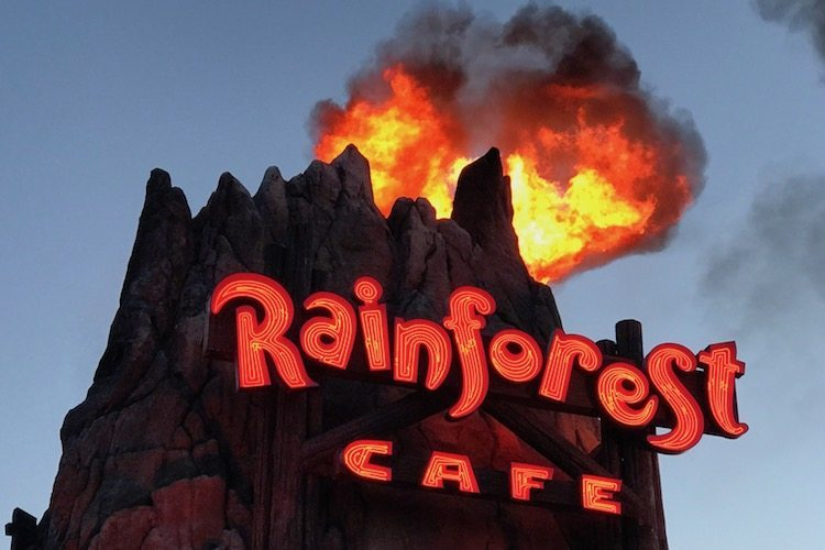 What to see at Disney Springs include an erupting volcano at the Rainforest Cafe